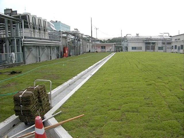トーヨーカラー茂原工場様駐車場車路緑化