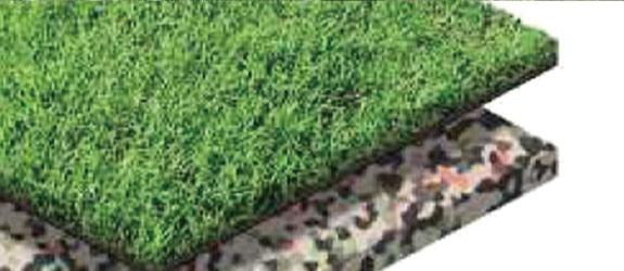 屋上緑化専用芝の特徴