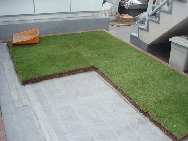 屋上緑化施工手順